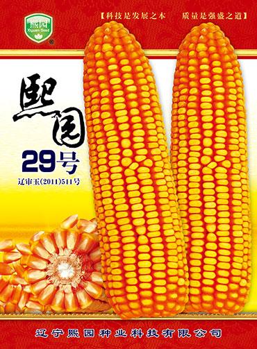 12bet官网开户29号